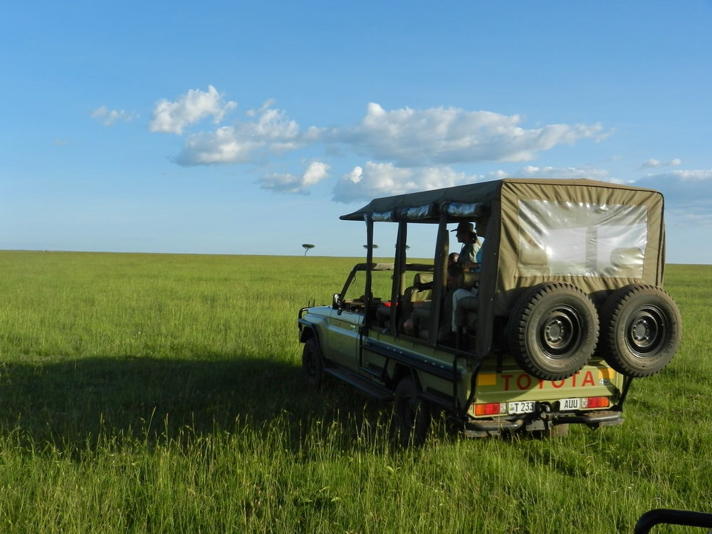 green and black jeep wrangler on green grass field under blue sky during daytime