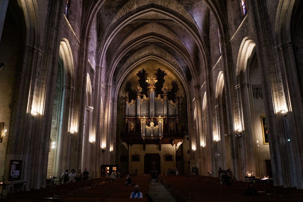 people inside cathedral during daytime