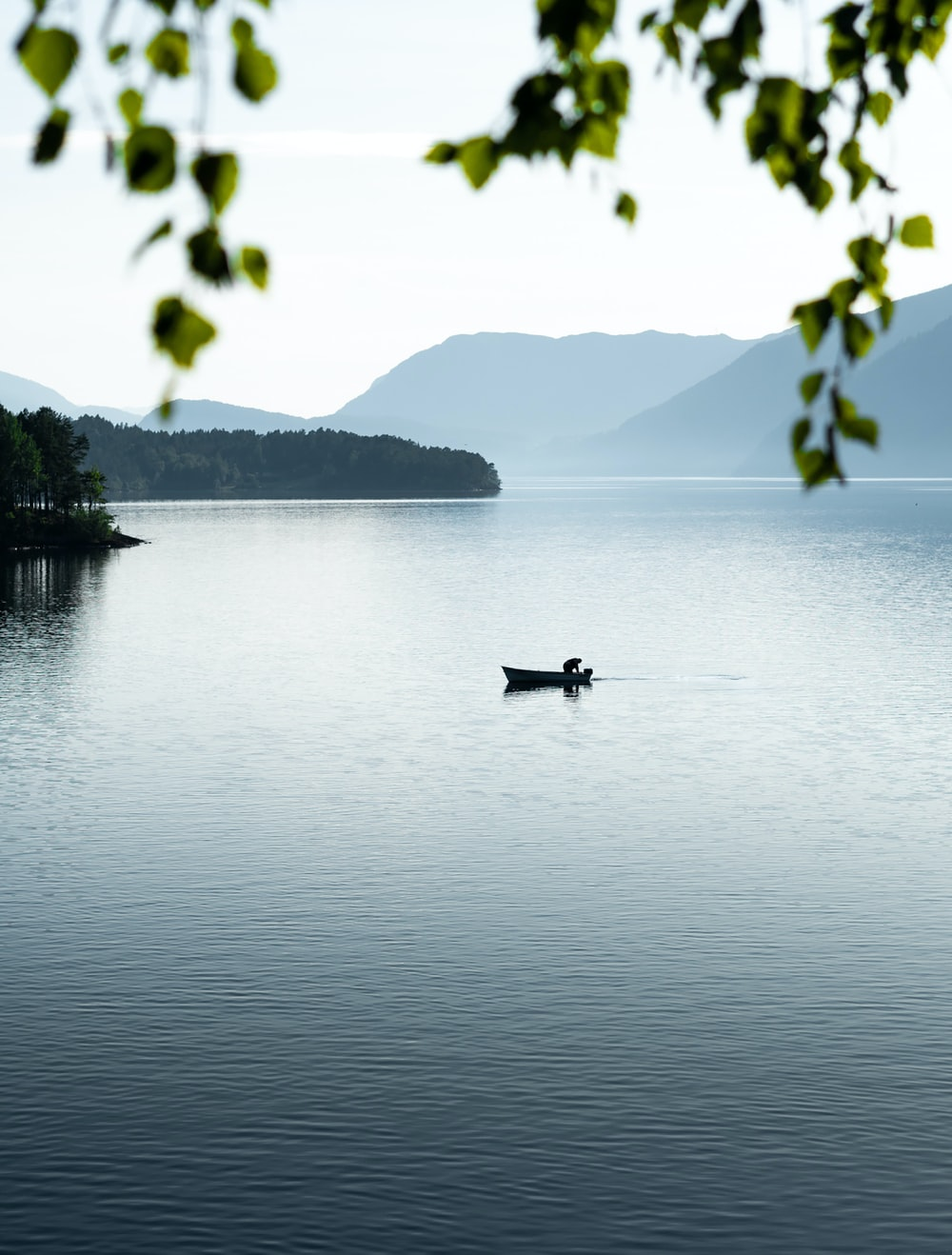 person in black shirt riding on boat on lake during daytime