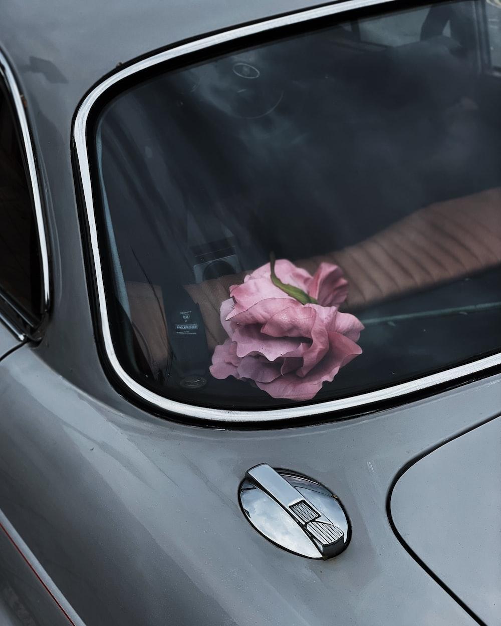 pink flower on car dashboard