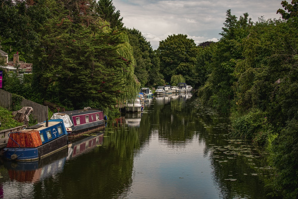 red and white boat on river near green trees under cloudy sky during daytime