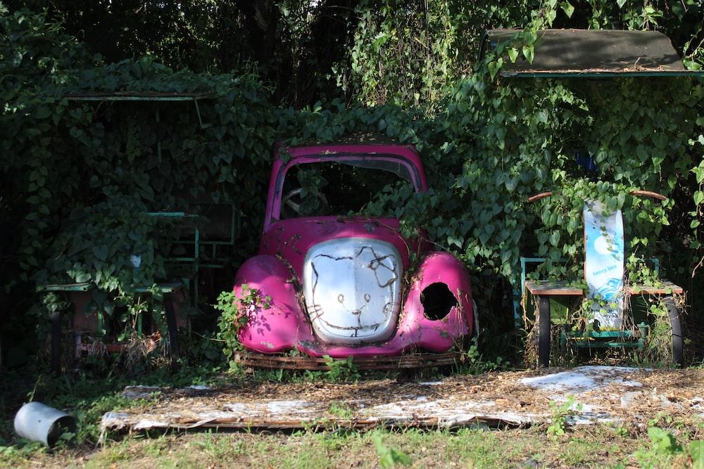 pink volkswagen beetle on brown wooden bench
