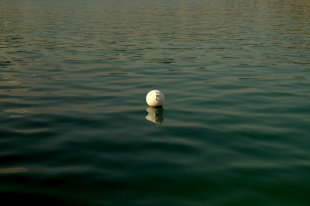 white round ball on green water