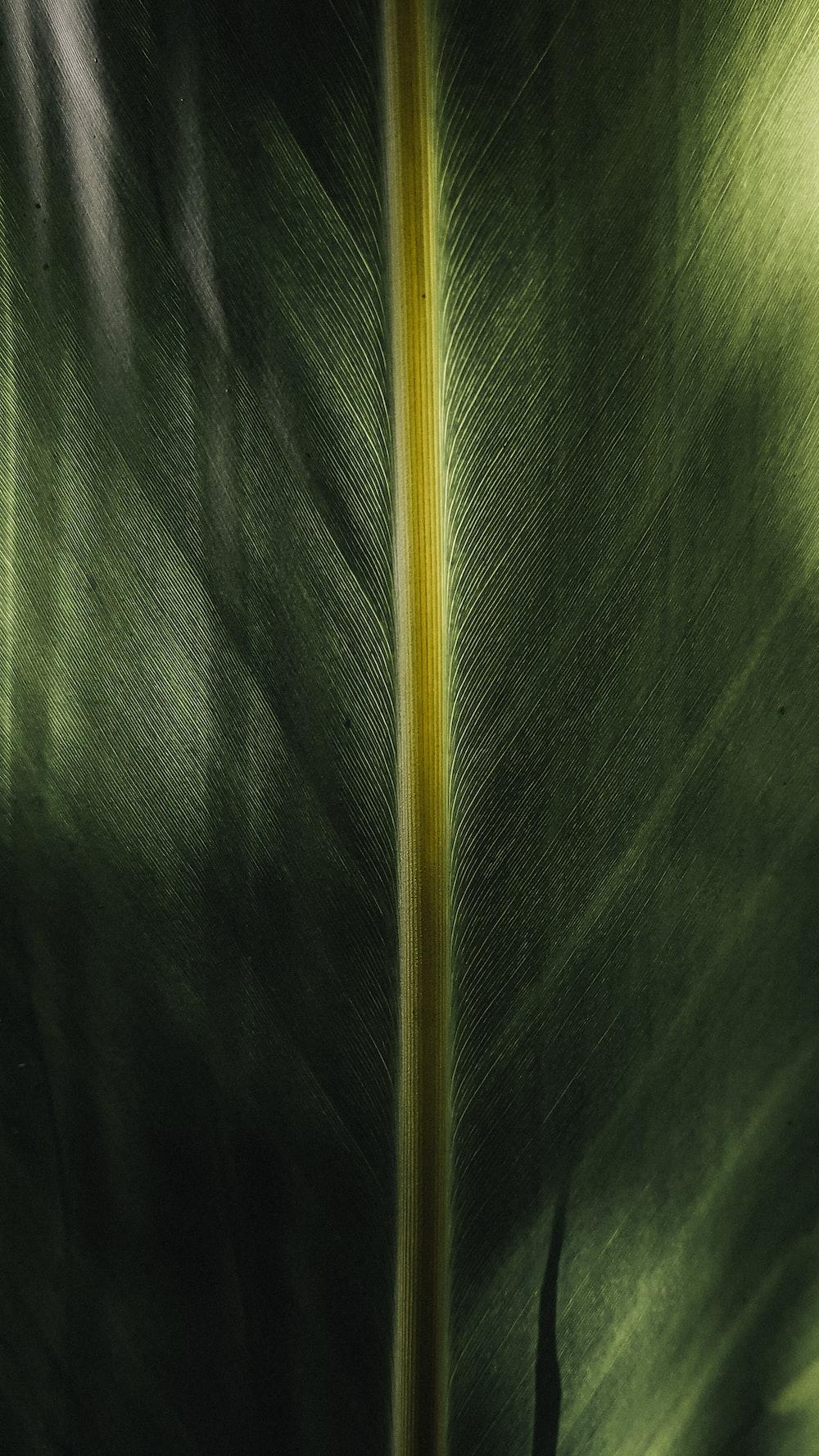 yellow stick on green textile
