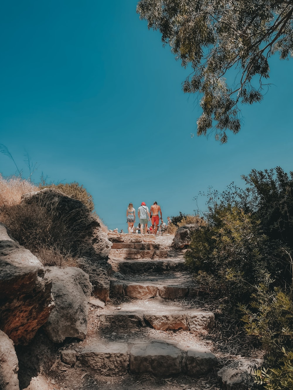 people standing on rocky hill during daytime