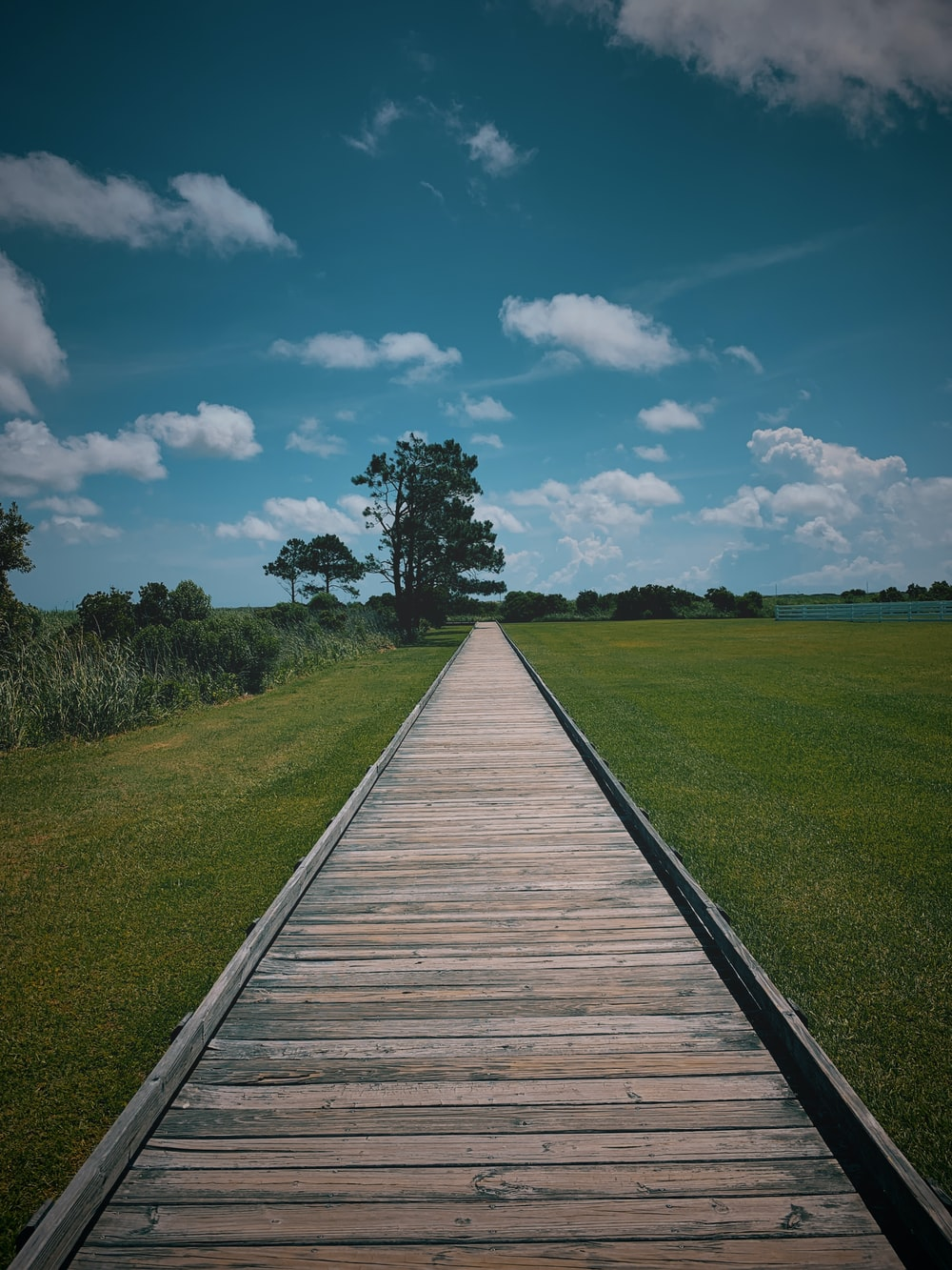 brown wooden pathway between green grass field under blue and white cloudy sky during daytime