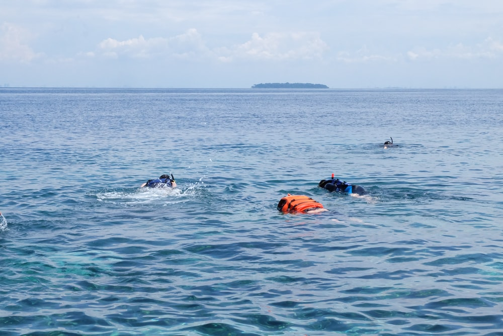 2 person swimming on sea during daytime
