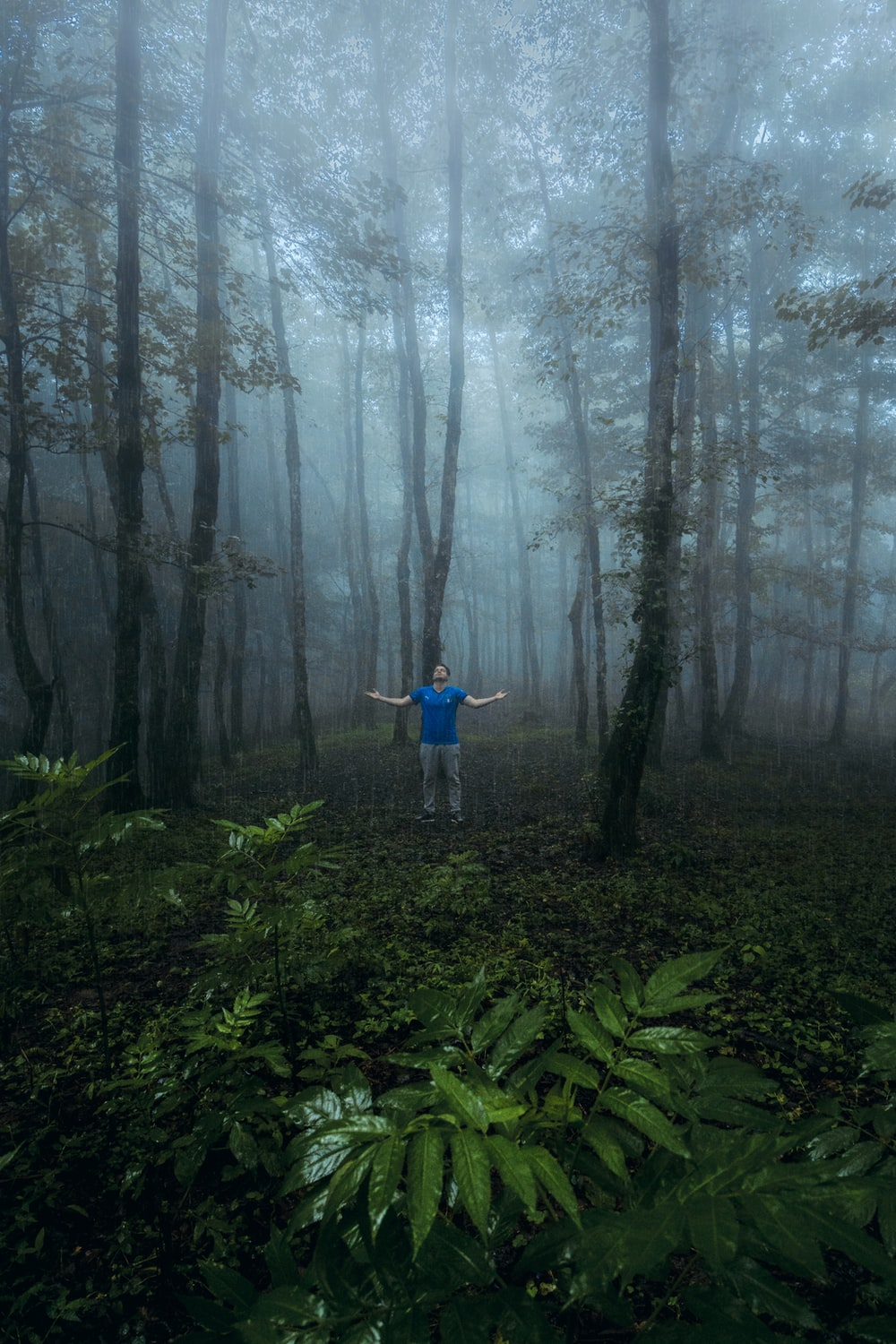 man in blue shirt standing on forest during daytime