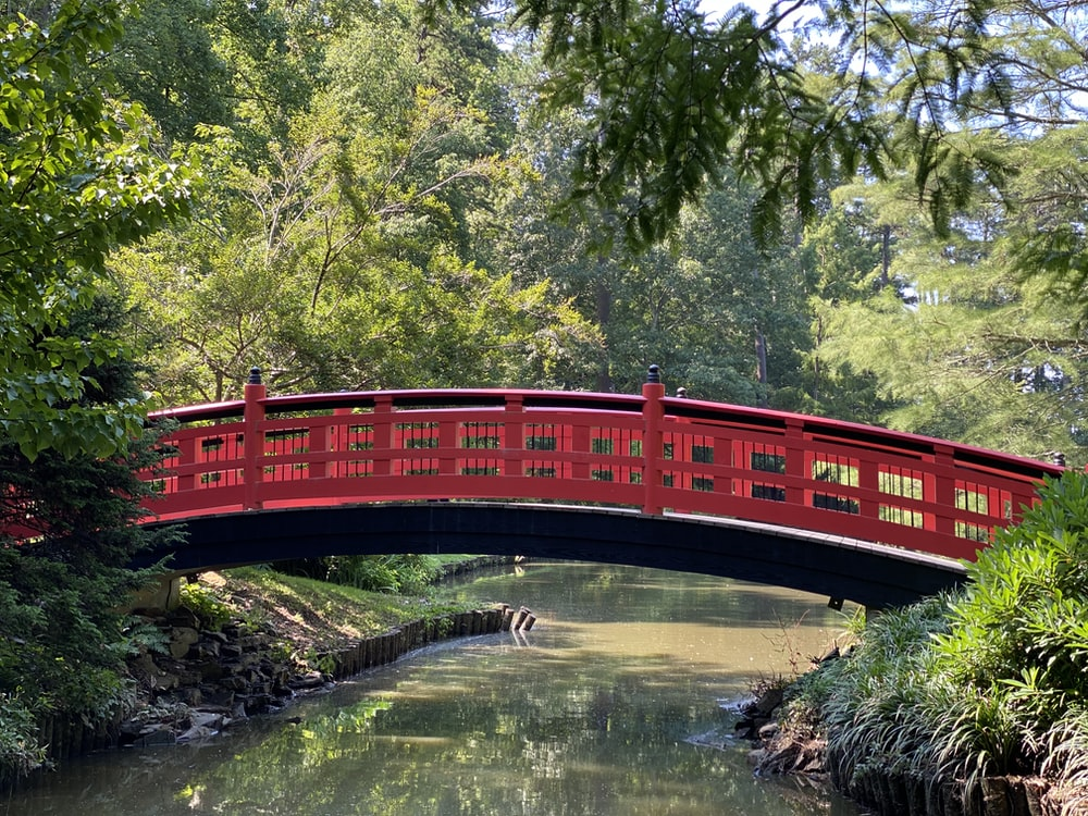 red bridge over river during daytime