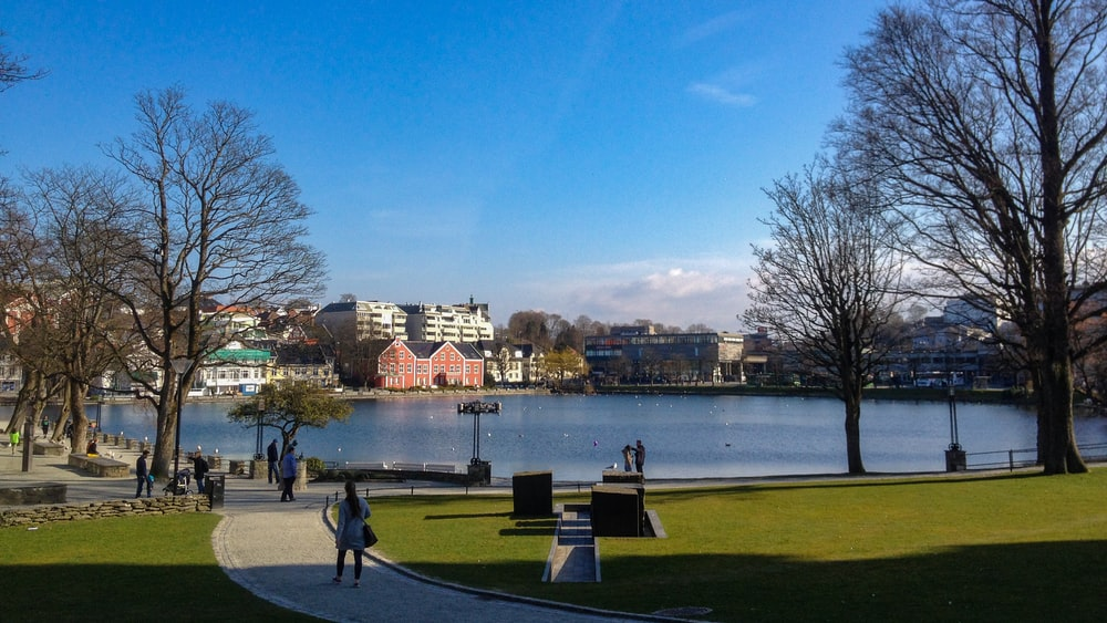 people walking on park near body of water during daytime