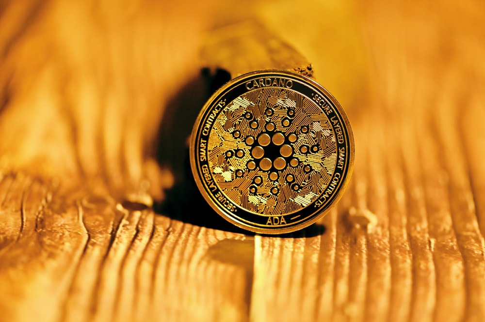 gold and black round chronograph watch