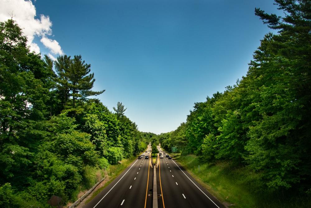 black asphalt road between green trees under blue sky during daytime