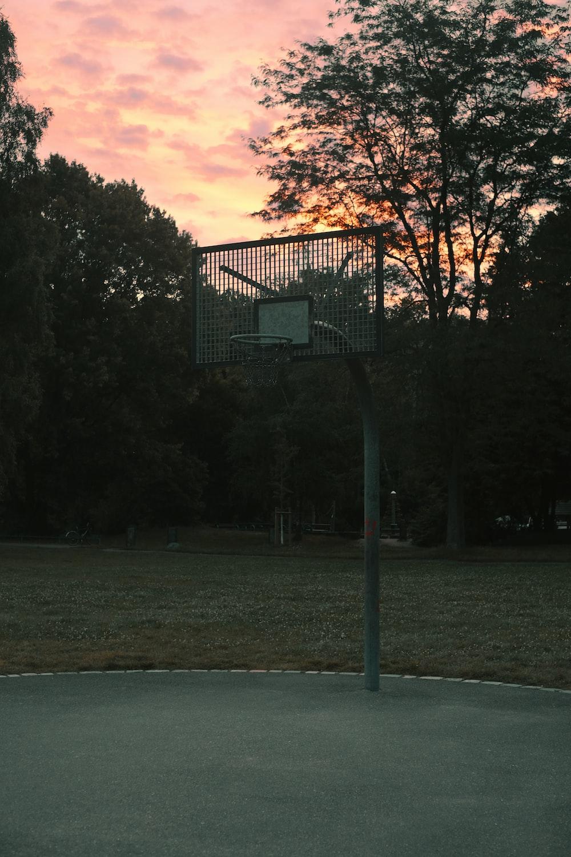 black metal basketball hoop on green grass field during sunset