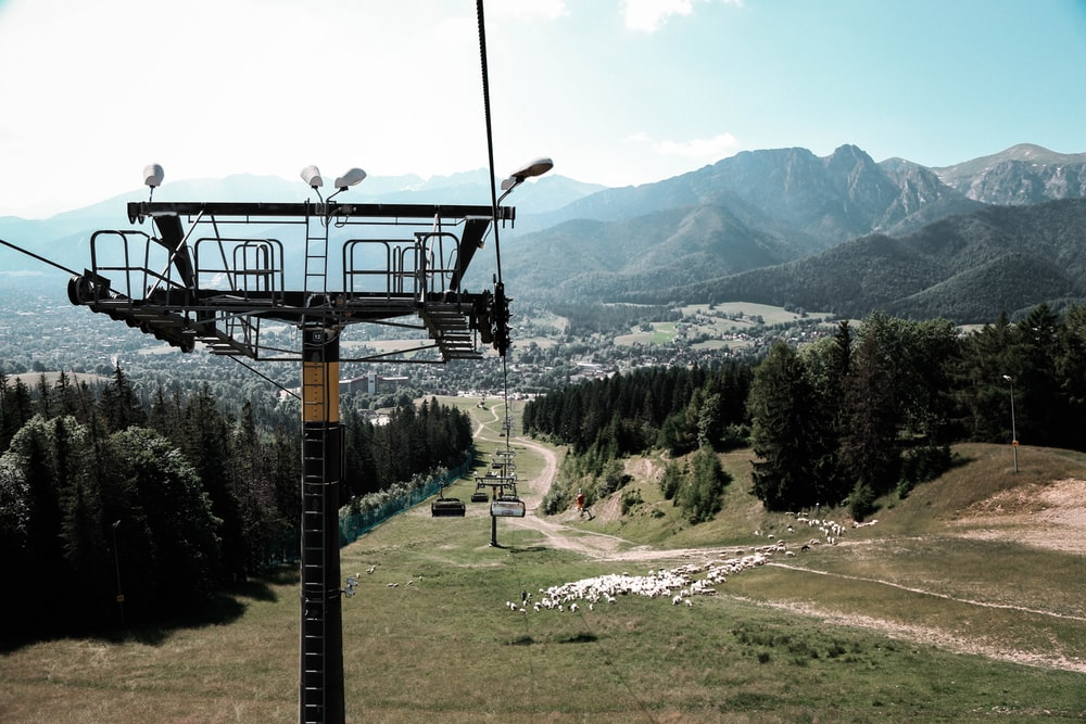 cable cars over green grass field near green trees and mountains during daytime