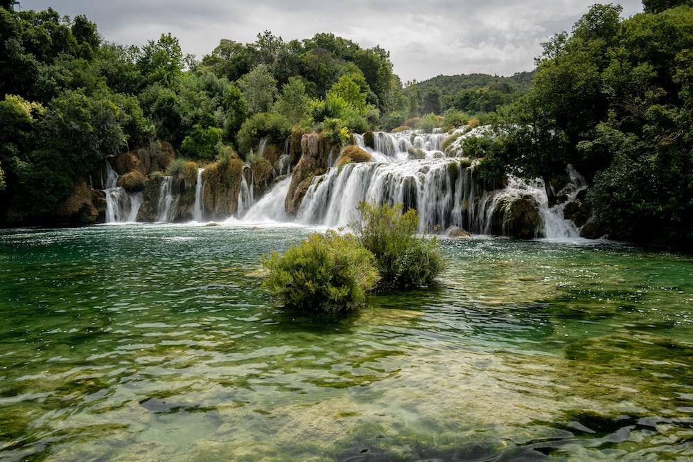 green trees beside waterfalls during daytime