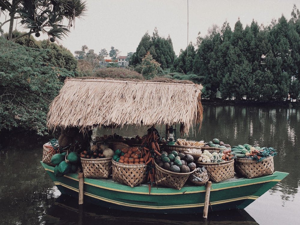 brown wooden boat on body of water near green trees during daytime