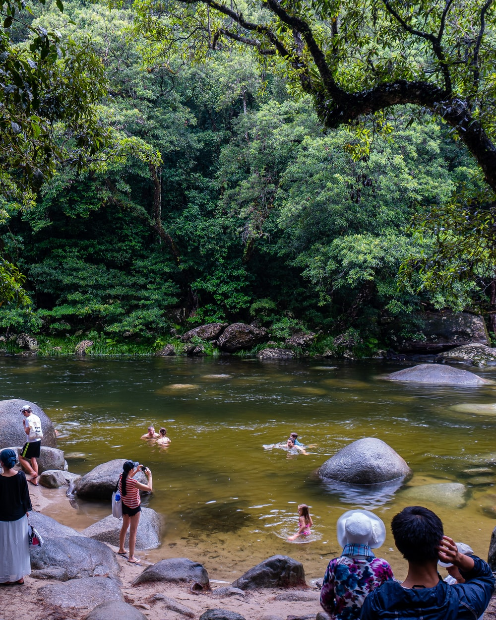 people in water in the forest during daytime