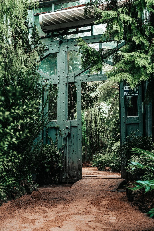 green wooden cross on green plants