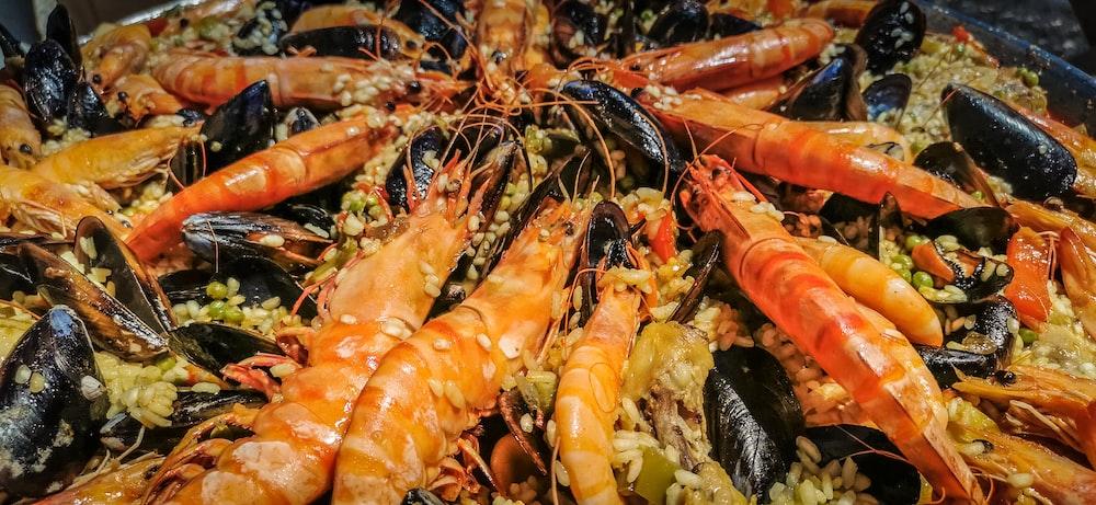 orange and black shrimp on green grass