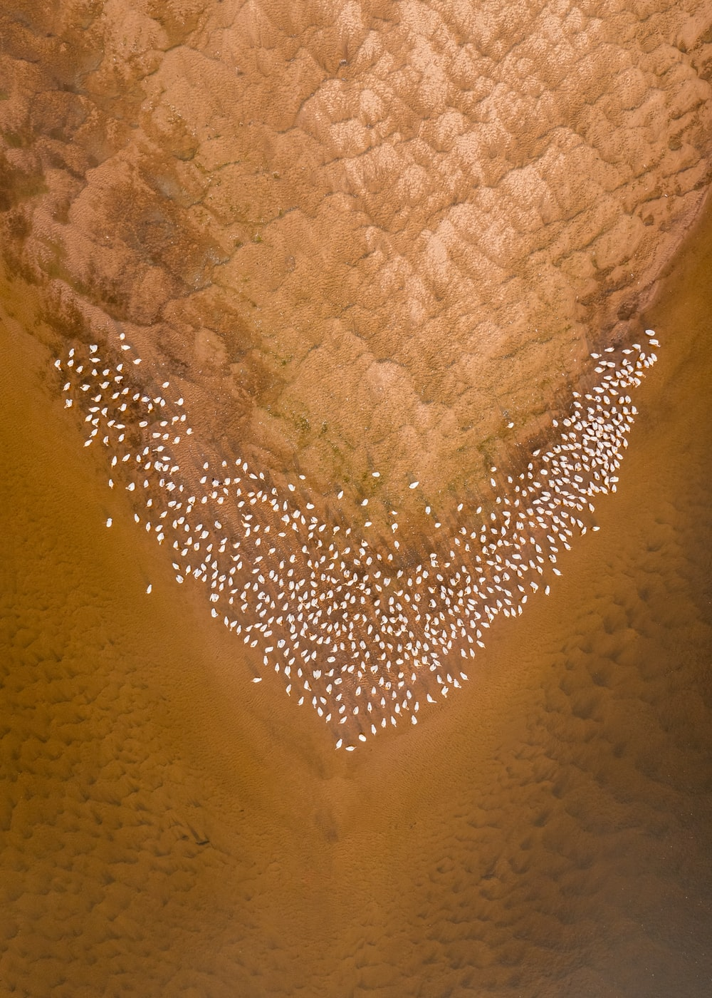 brown sand with heart shaped
