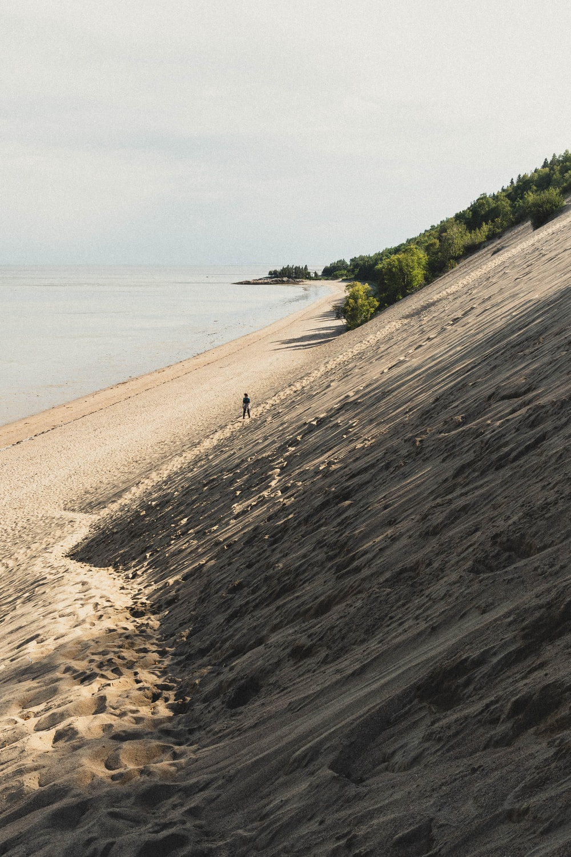 people walking on beach shore during daytime