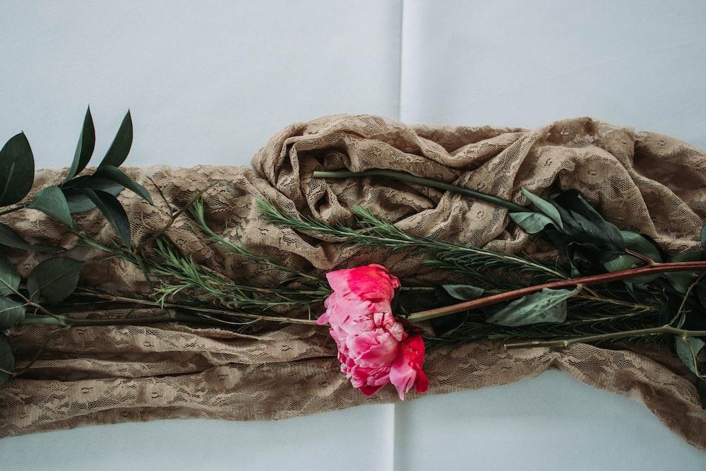 pink rose on brown textile