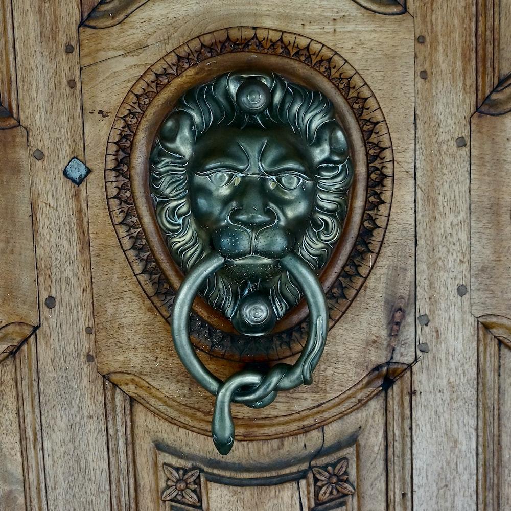 brass lion door handle on brown wooden door
