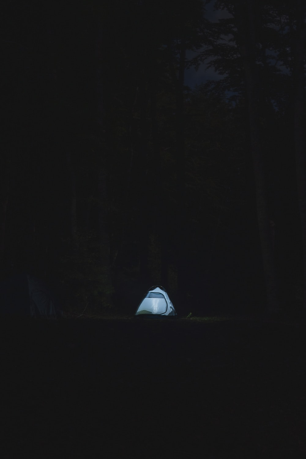 white tent in the middle of forest during night time