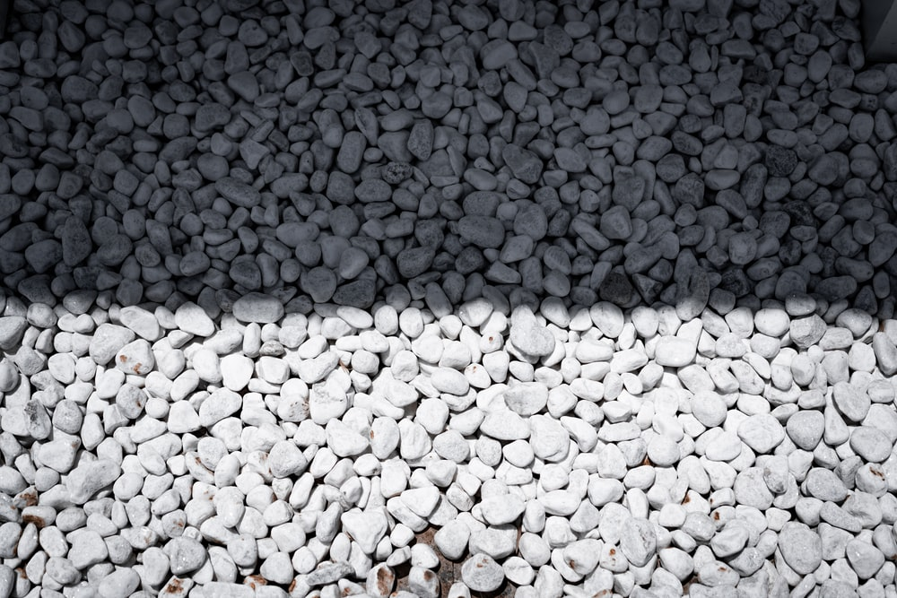 white and gray pebbles on ground
