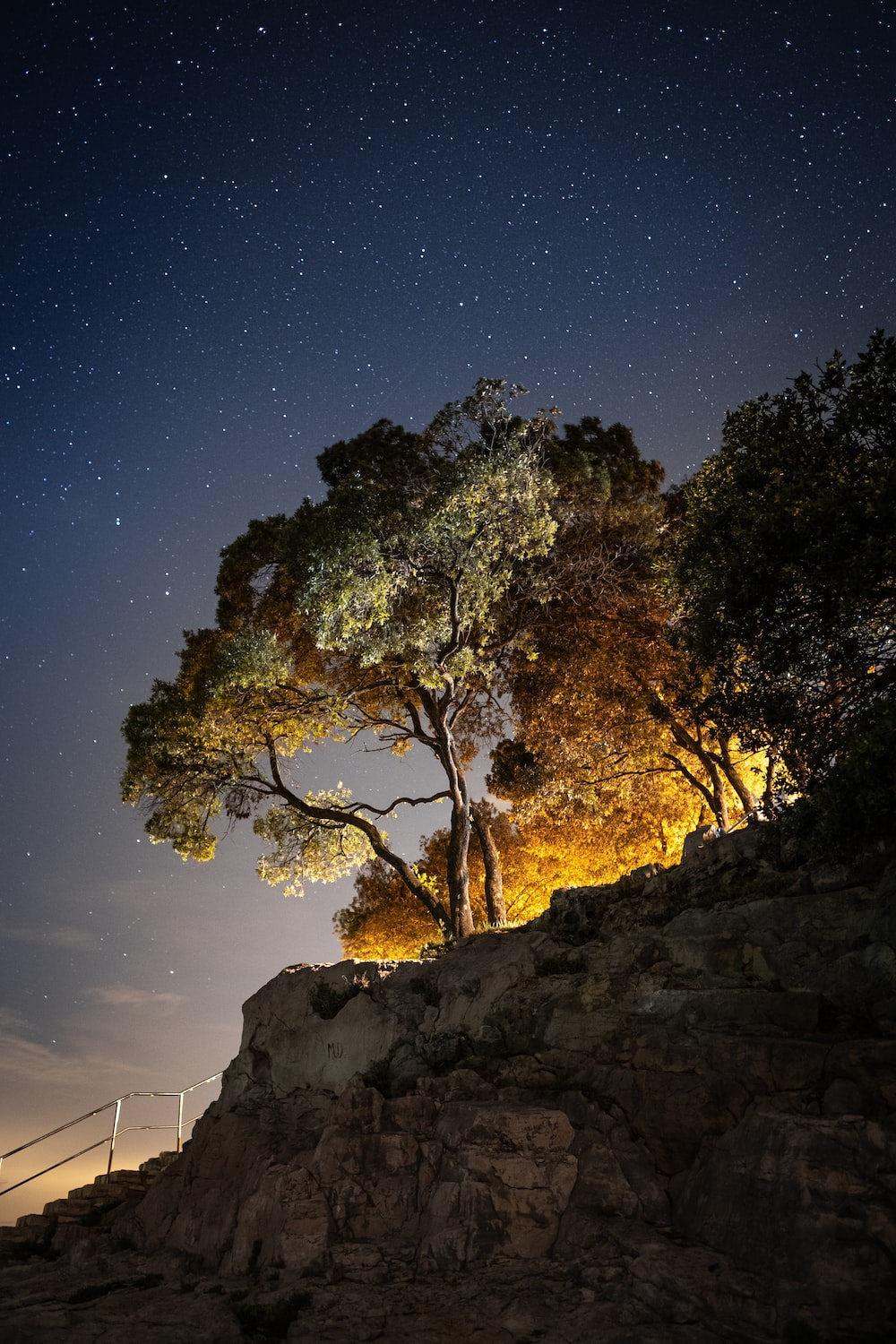 green trees on brown rocky mountain during night time