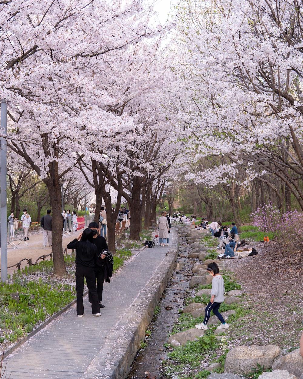 people walking on sidewalk during daytime