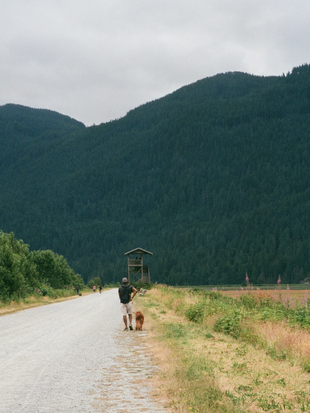 2 people riding on brown horse on road during daytime