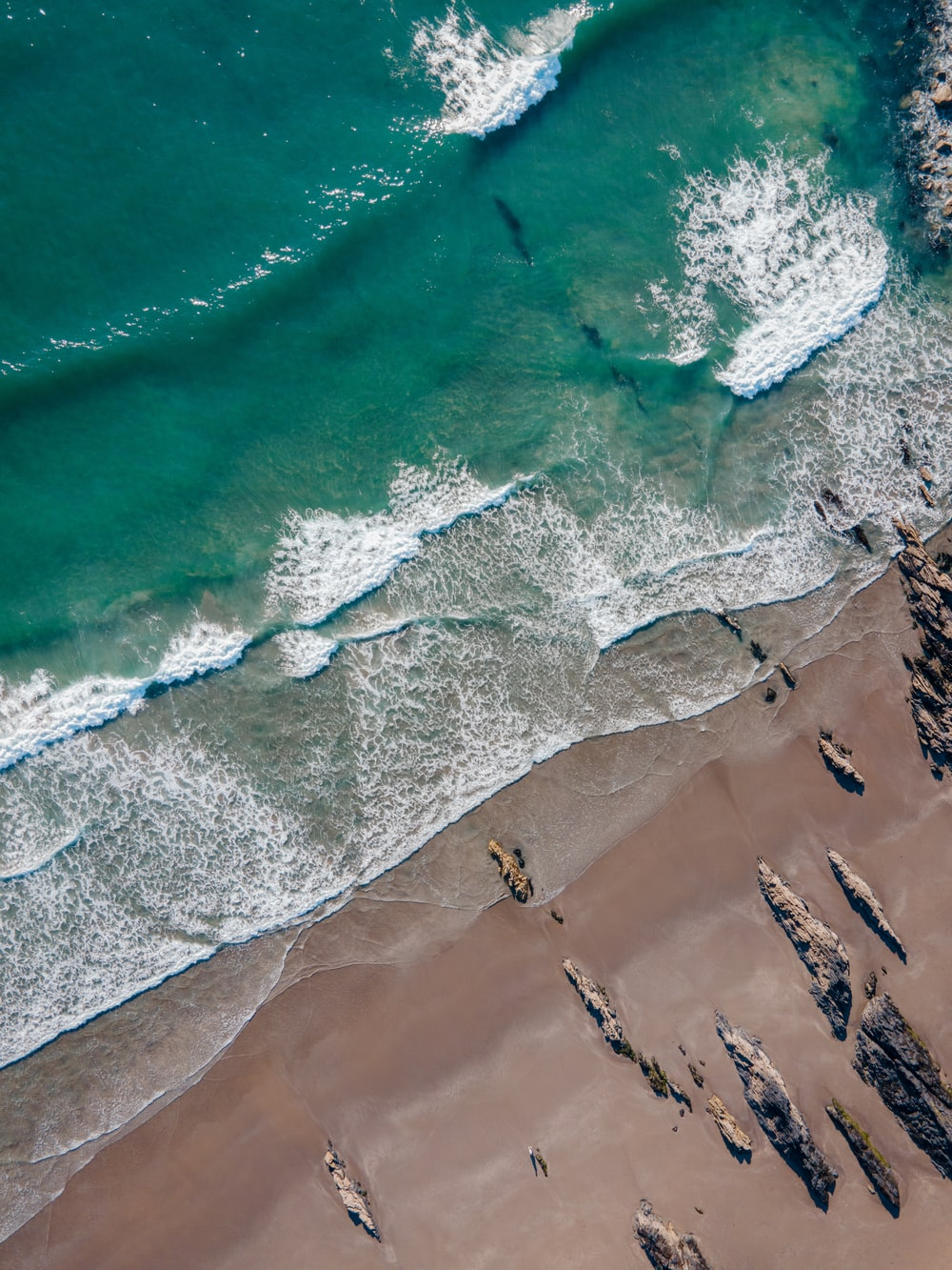 aerial view of people on beach during daytime