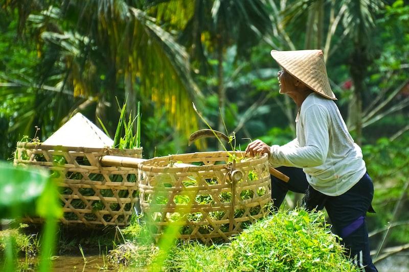 man holding brown woven basket