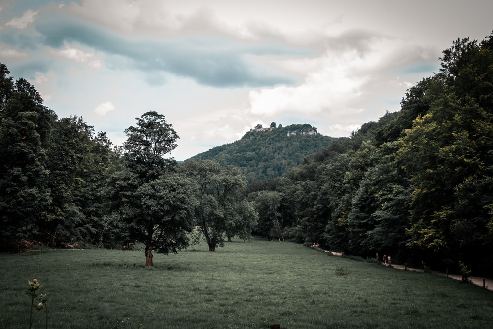 green grass field near green trees and mountain under cloudy sky during daytime