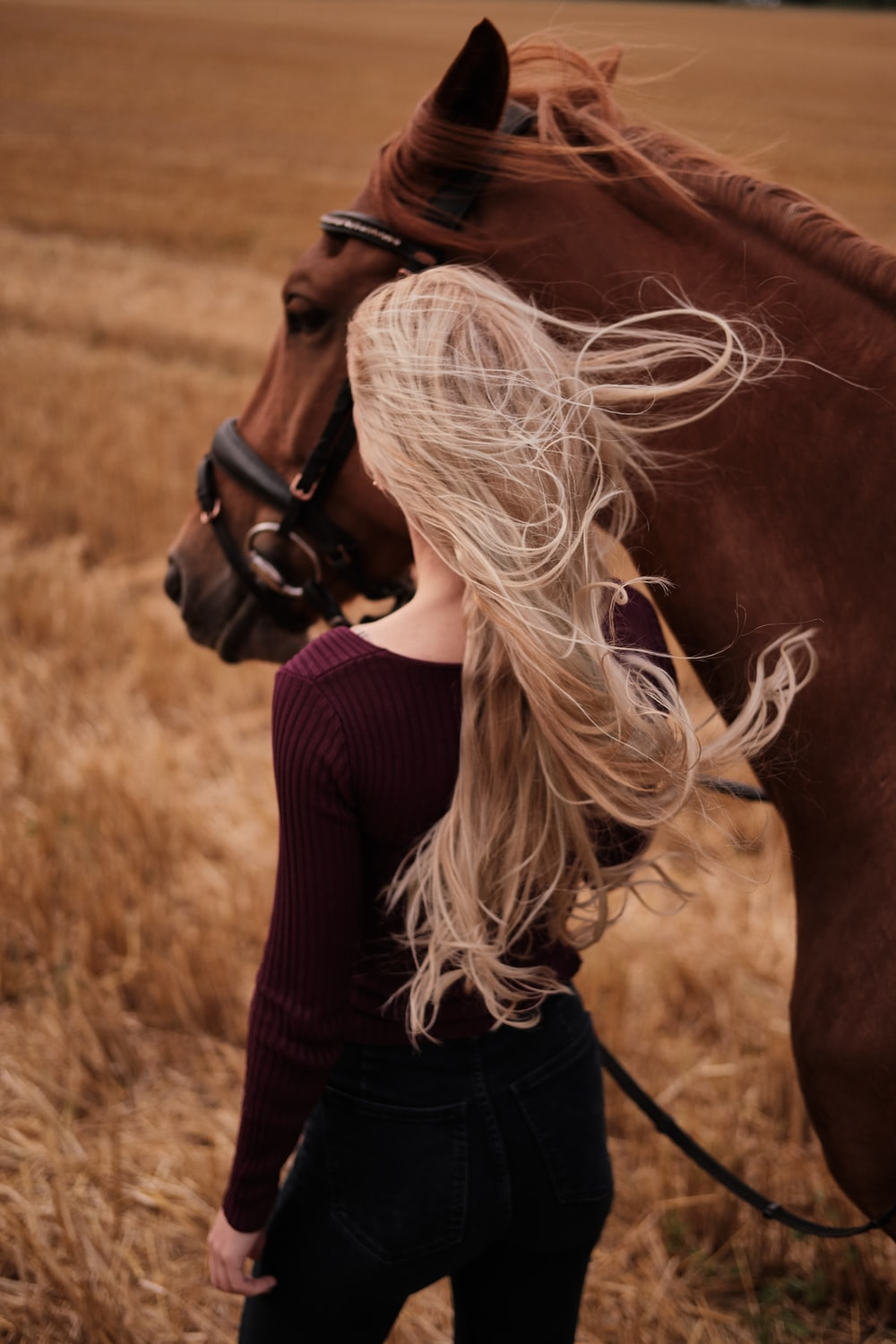 woman in black knit sweater holding brown horse