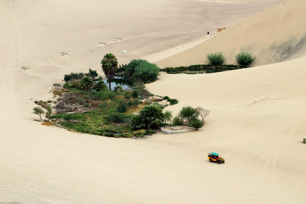 yellow and blue car on brown sand
