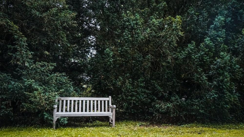 white wooden bench on green grass field