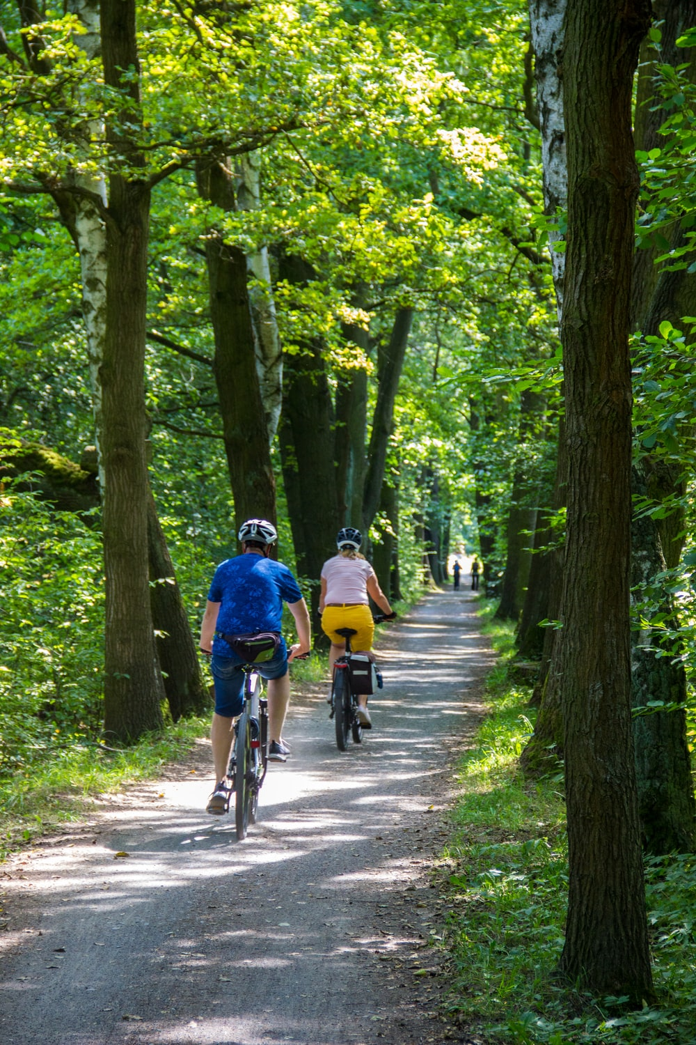 people riding bicycle on road between green trees during daytime