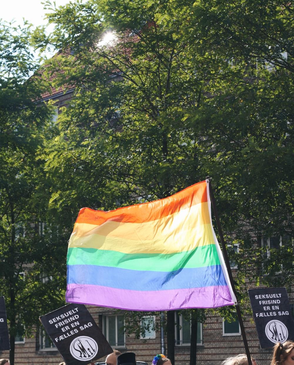 rainbow flag on pole near trees during daytime