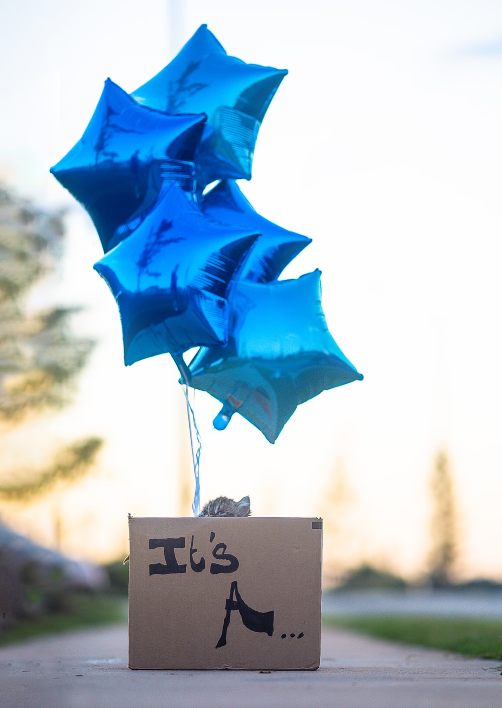 blue umbrella with i love you print