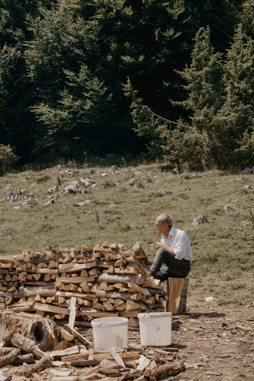 man in white shirt and black shorts standing beside brown wood logs