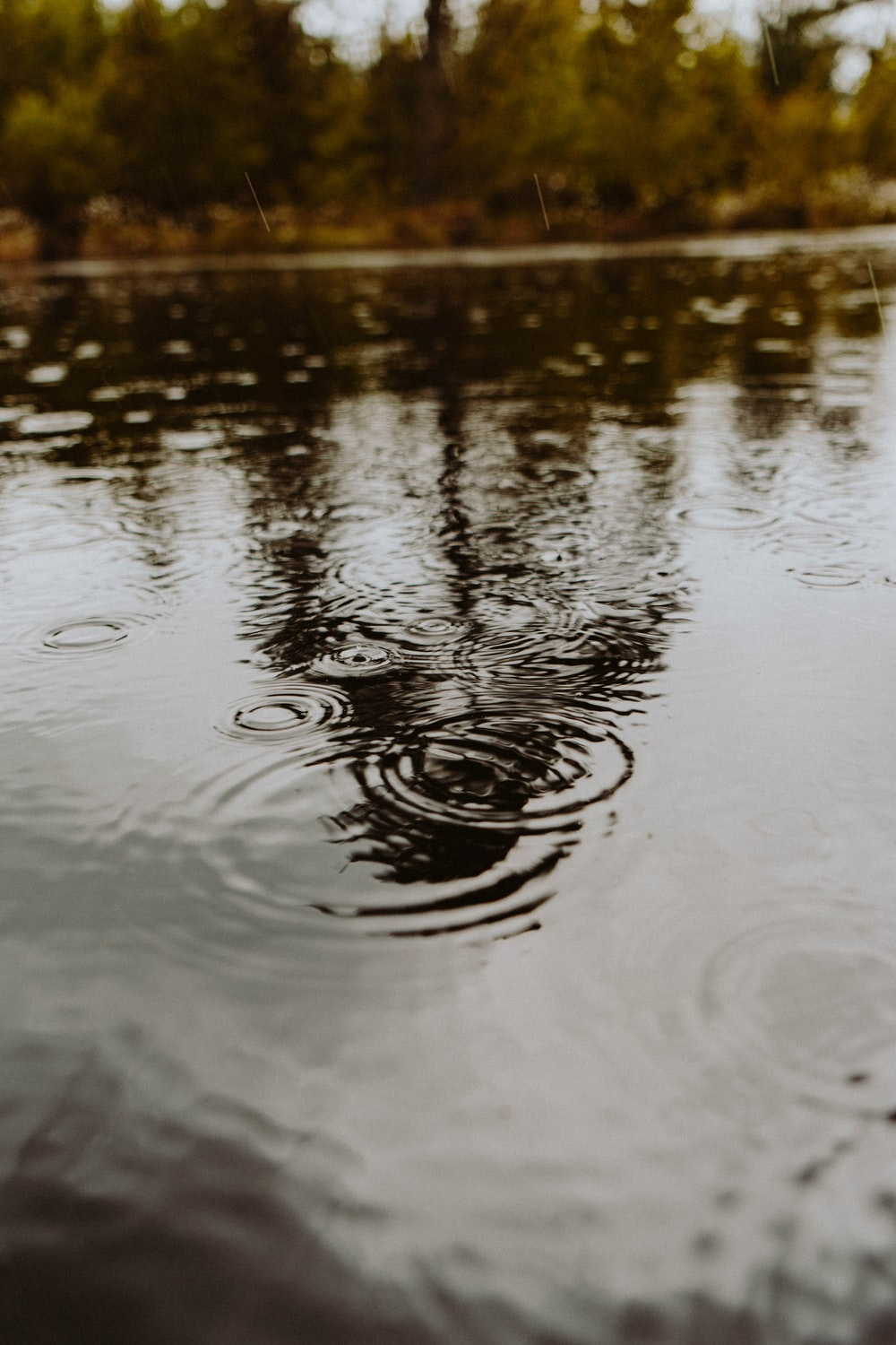 water droplets on body of water