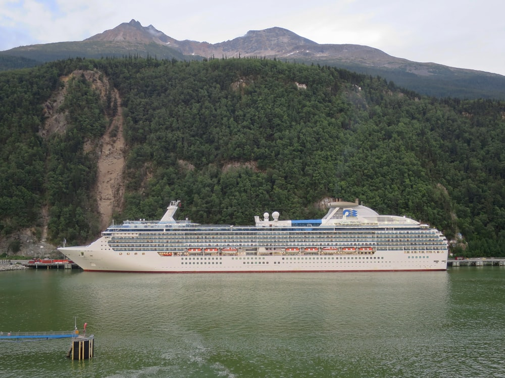 white cruise ship on sea near green mountain during daytime