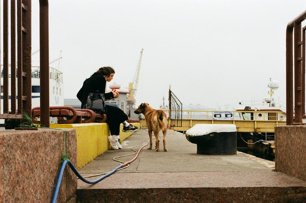 woman in black jacket sitting beside brown dog during daytime