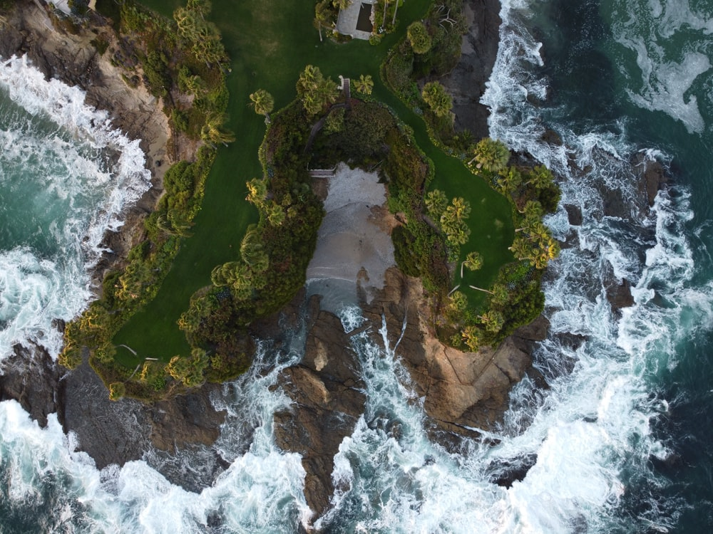 aerial view of green trees on island