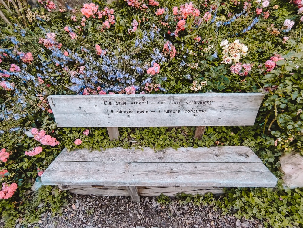 white wooden bench surrounded by pink and white flowers