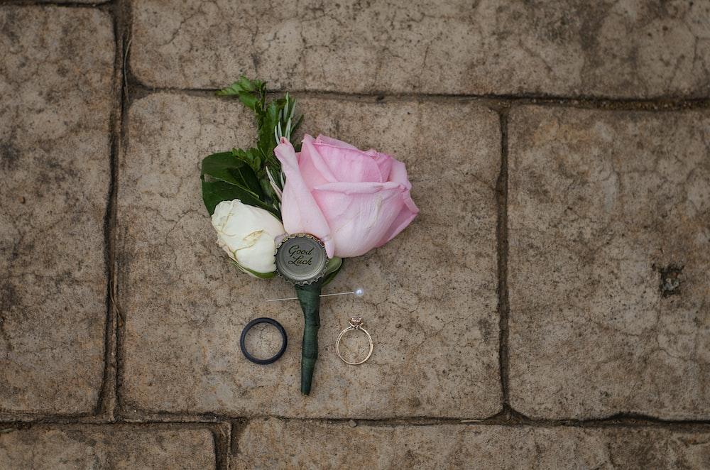 pink rose beside black magnifying glass
