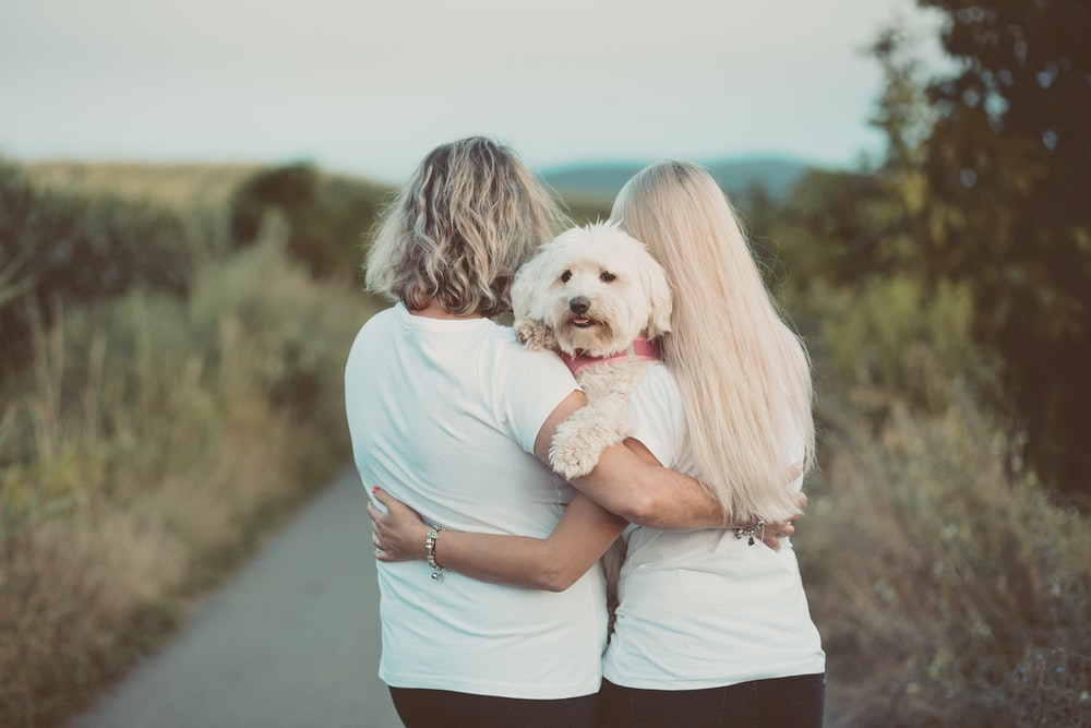 woman in blue t-shirt hugging white dog
