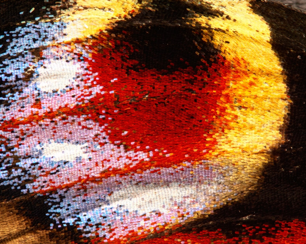 red yellow and black textile